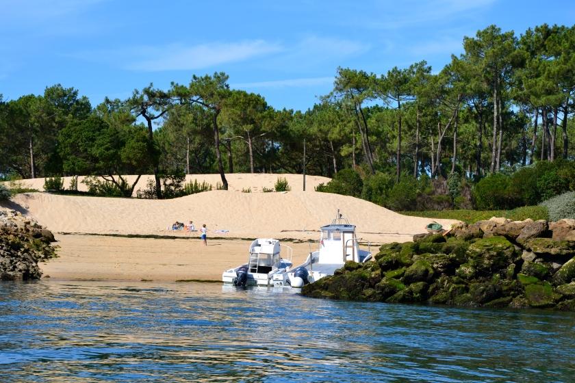 Je veux juste me rouler sur cette jolie plage  Le ferret version petit paradis photo Sophie Juby