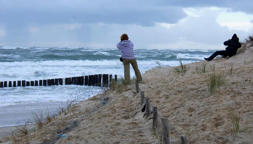 Un barrage contre l'Atlantique. Photo sophie Juby- Cap Ferret