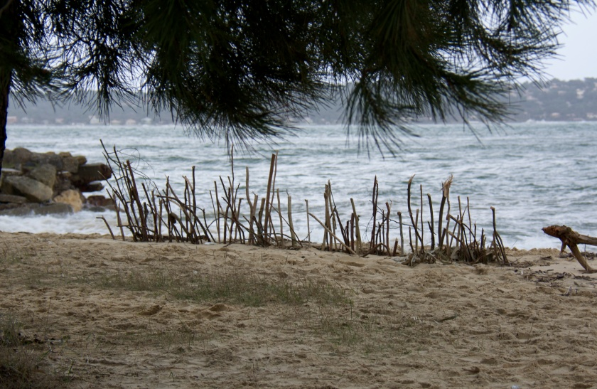 Timide ex-voto pour calmer la colère des Dieux marins. Photo Sophie juby- le Cap Ferret
