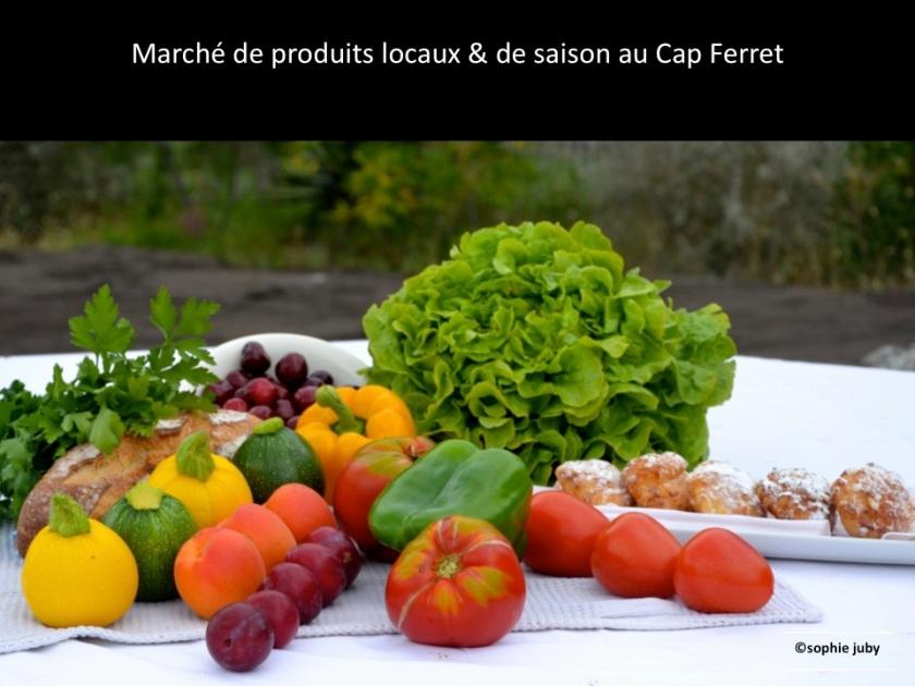 légumes de saison cap ferret, sophie juby