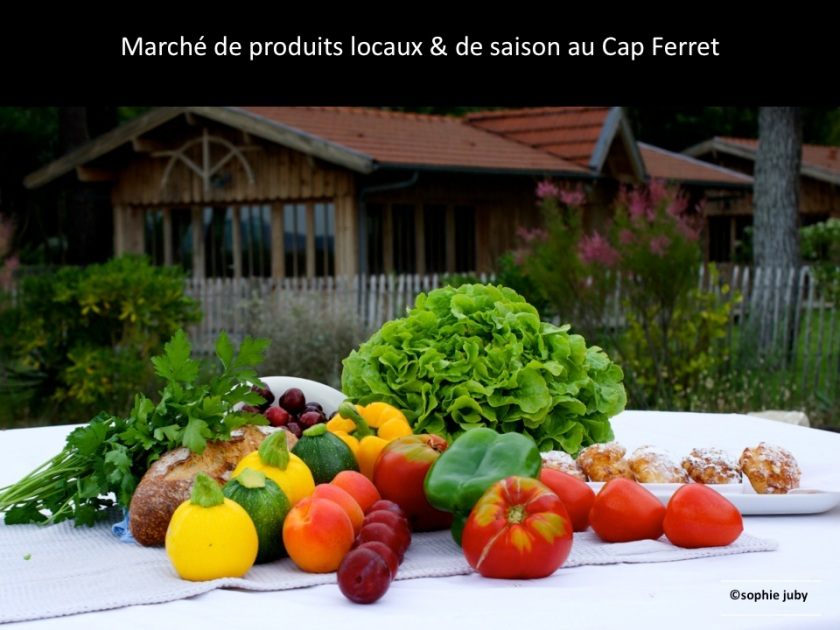 marché du Cap Ferret, photo sophie juby
