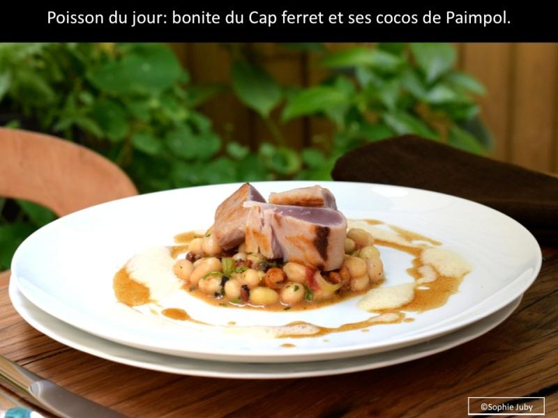 bonite du Cap ferret, recette tanguy laviale