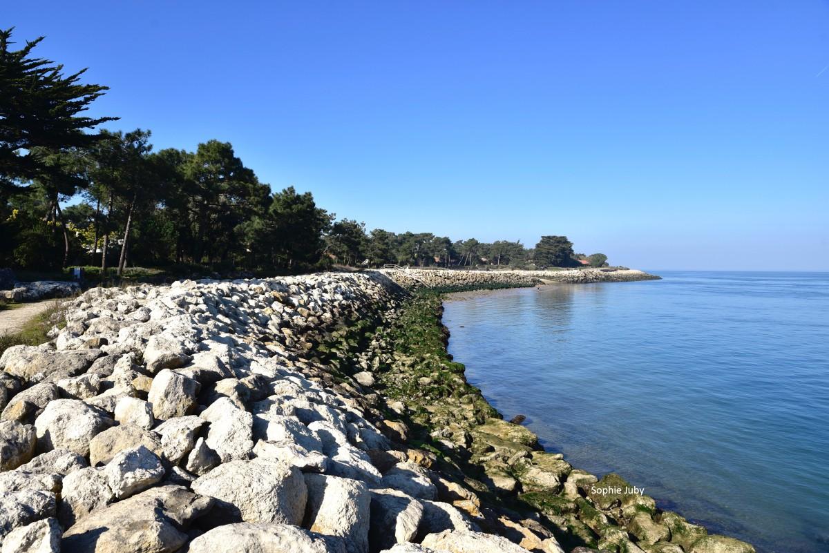 La Pointe du Cap Ferret, Quel avenir  ? Part 2 : la Stratégie Locale.